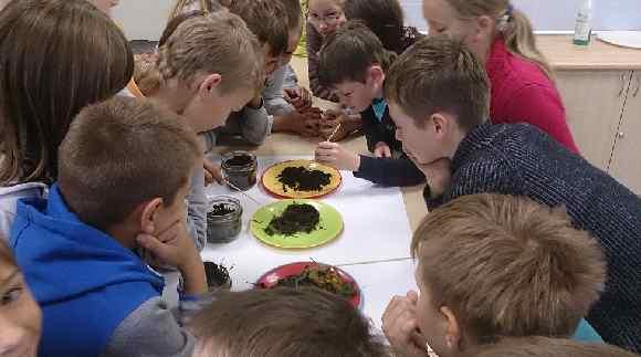 Skolnieki iepazīst komposta veidošanās posmus - no virtuves atkritumiem līdz gatavam kompostam.